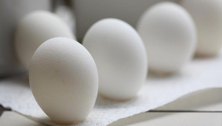 schlechtes ei gegessen